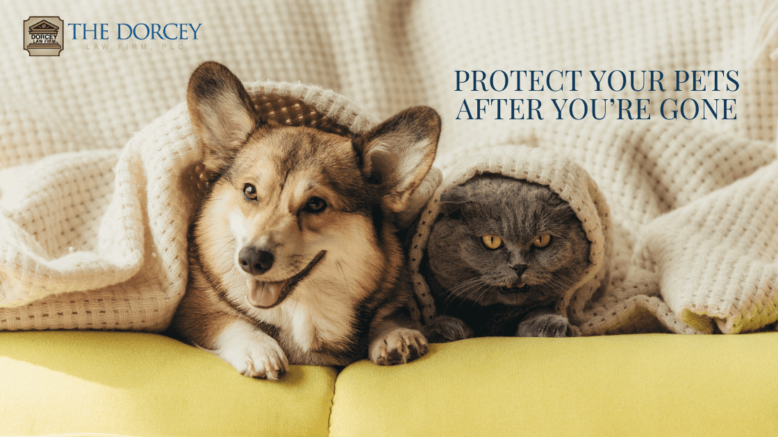 Protect Your Pets After You're Gone